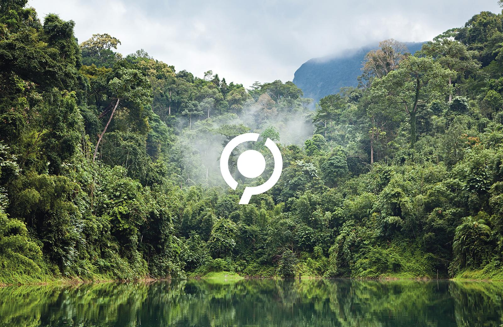 Climate Partner Tropische Landschaft und 1C Logo